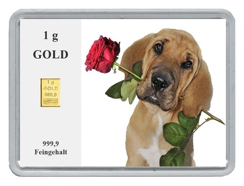 "1g Goldbarren in Motivbox, ""Hund mit Rose"""